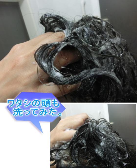 ブラックシャンプー 洗髪
