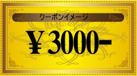 3000¥